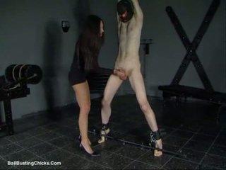 Slapping bite et ballbusting torture bite et couilles