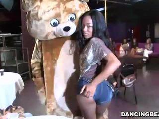 Dejošas lācis fucks lots no meitenes uz sekss ballīte