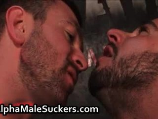 stück, homosexuell blowjob, denken sie homosexuell saugen