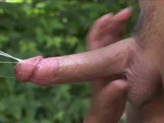 Stor pupper og rumpe av latina havana ginger