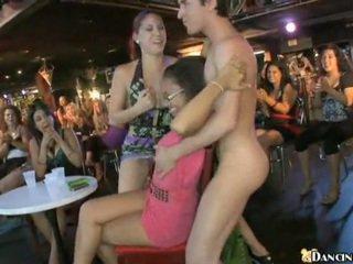 Nowy male stripper