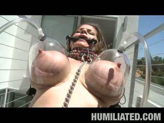 brunette, big boobs, torture
