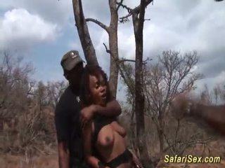 প্রচন্ড safari যৌন আবেশ লাগামহীন যৌনতা <span class=duration>- 12 min</span>