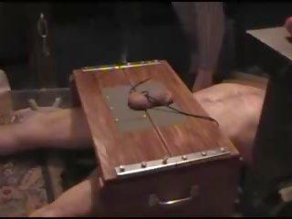 Lul marteling in trample doos, gratis whipping porno video- 1b
