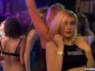 mengisap cock, group sex, kelompok orgy