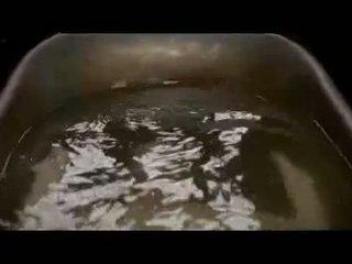 Eva green gorące mokre cycki i tyłek