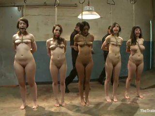 Seksi females imajo njihovo vags toyed v a poredno sadism film