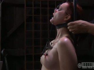 pussy mučení, bdsm, otroctví