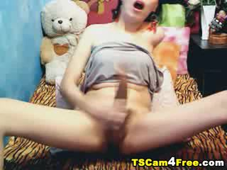 shemale, tranny, webcams