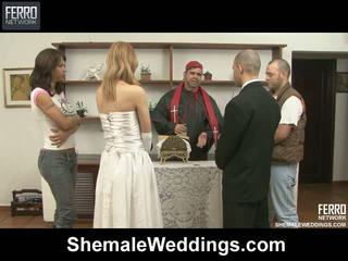 Alessandra tony shelady งานแต่งงาน เพศ